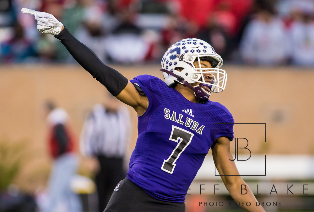 Saluda Tigers Dallan Wright (7) celebrates a touchdown reception against the Barnwell Warhorses in the Class AA State Championship game. 2019 Saluda State Championship Football Photos