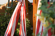 Flags and adobe wall in garden, Taos, New Mexico