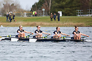 WJ17 4x<br /> <br /> Junior Sculling Head 2019<br /> <br /> To purchase this photo, or to see pricing information for Prints and Downloads, click the blue 'Add to Cart' button at the top-right of the page.