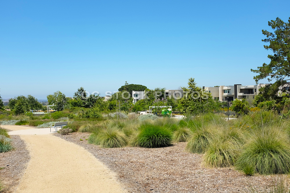 Crushed Granite Trail in the Great Park Bosque Area Bordered by New Homes