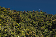 The Moon above the limestone ridge of the Fox River Canyon at the West Coast of New Zealands South Island.
