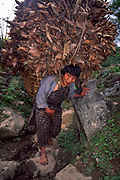 Woman carries leaves for winter animal feed, Mo Chu gorge, Central Bhutan