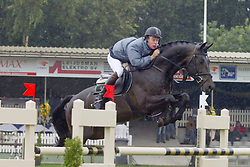Bles Bart-Stetter 5jr<br /> KWPN Paardendagen Ermelo 2004<br /> Photo © Hippo Foto
