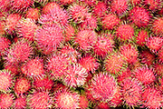 Rambutan for sale at an early morning street market in Yangon, Myanmar on 18th May 2016.  A large variety of local products are available for sale in fresh markets all over Yangon, all being sold on small individual stalls