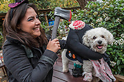 Milo, a Bichon Frise with headless body, and his owner Enza - A charity Halloween Dog Walk and Fancy Dress Show organised by All Dogs Matter at the Spaniards Inn, Hampstead. London 29 Oct 2017.