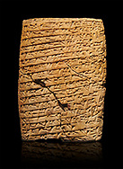 Hittite cuneiform tablet. Adana Archaeology Museum, Turkey. .<br /> <br /> If you prefer to buy from our ALAMY STOCK LIBRARY page at https://www.alamy.com/portfolio/paul-williams-funkystock/hittite-art-antiquities.html . Type - Adana - in LOWER SEARCH WITHIN GALLERY box. Refine search by adding background colour, place, museum etc<br /> <br /> Visit our HITTITE PHOTO COLLECTIONS for more photos to download or buy as wall art prints https://funkystock.photoshelter.com/gallery-collection/The-Hittites-Art-Artefacts-Antiquities-Historic-Sites-Pictures-Images-of/C0000NUBSMhSc3Oo