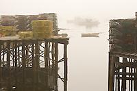Fog settles over the quiet harbor of Corea along the Maine coast.