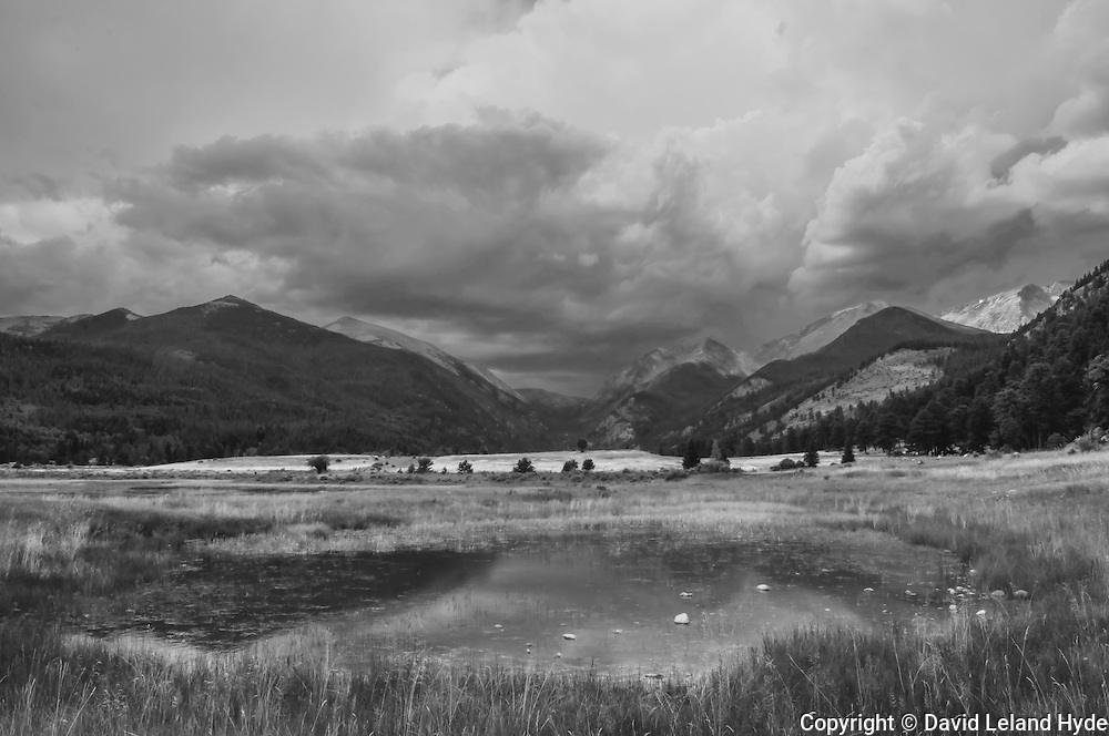Beaver Meadows, Rocky Mountain National Park, Colorado Rocky Mountains, dark skies, storm clouds, sunlight through clouds, reflecting pool, boreal forest, Ponderosa Pine, Douglas Fir, Mountain Scenes, Dark Forest, Mountain Landscapes, natural art, Black and White Art, Black and White Photography