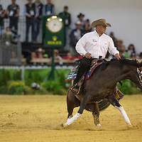 Reining Team Competition & Individual Qualifier - Day 2