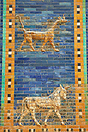 Coloured glazed brick panels of the facade of the  first smaller Ishtar Gate, Babylon, dating from 604-562 BC. Babylon (present day Iraq). The Ishtar Gate, Babylon, was situated in the northern wall of the city and was named after the goddess Ishtar. The gate was decorated with reprentations of bulls, the symbol of the weather god Adad, and dragons (Babylonian Mushhushu), the symbol of the city God Marduk. The mythical composite animal has the head and the body of a snake, the front legs of a lion, the hind legs of a bird and a scorpion sting in the tail. The ground plan and debris of the gate buildings were uncovered during the German excavation from 1899-1917 directed by Robert Koldewey. The Vorderasiatisches Museum, part of the Pergamon Museum, Berlin .<br /> <br /> If you prefer to buy from our ALAMY PHOTO LIBRARY  Collection visit : https://www.alamy.com/portfolio/paul-williams-funkystock/babylon-antiquities.html<br /> <br /> Visit our ANCIENT WORLD PHOTO COLLECTIONS for more photos to download or buy as wall art prints https://funkystock.photoshelter.com/gallery-collection/Ancient-World-Art-Antiquities-Historic-Sites-Pictures-Images-of/C00006u26yqSkDOM