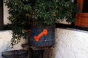 Crude painting of a penis on a plant pot outside the rest house on the path to  Paro Taktshang Goemba the Tiger's nest.This is seen as a sign of wealth and good fortune and is seen on many houses in eastern Bhutan. Paro Taktsang Bhutan, Druk Yul. 11 November 2007