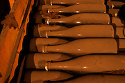 In the wine cellar: Dusty dust covered bottles lying in a wooden crate after the secondary fermentation in bottle. The bottles are sealed with a crown cap, the Union Champagne cooperative, also called Champagne de Saint Gall in Avize, Cote des Blancs, Champagne, Marne, Ardennes, France