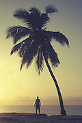 A man standing next to a tall palm tree silhouetted by the setting sun on the 27th October 2006 at Old Ningo Beach in Ghana. Old Ningo is a town in the Greater Accra Region of Ghana.