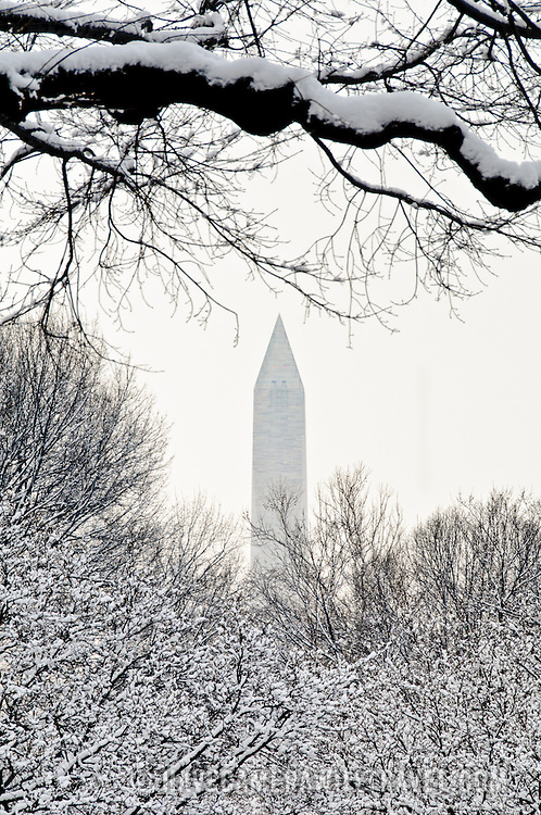 The top of the Washington Monument towers above bare trees covered in fresh snow from a recent snow storm in Washington DC.