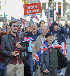 Protesters gathered in Trafalgar Square for a Unity Brexit now rally. Numbers were small as the group moved towards Downing Street, before turning back due to remembrance parades taking place at the Cenotaph. London, 10 November 2018.