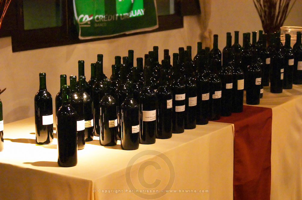 Bottles on a table with tasting samples for the big tasting. Montevideo, Uruguay, South America