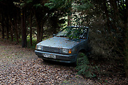 Old Nissan car abandoned amongst trees on the Isle of Wight, UK.