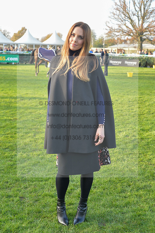 Singer MEL C at the 2014 Hennessy Gold Cup at Newbury Racecourse, Newbury, Berkshire on 29th November 2014.  The Gold Cup was won by Many Clouds ridden by Leighton Aspell.