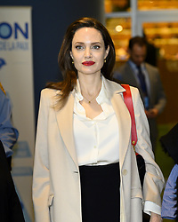 March 29, 2019 - New York, New York, U.S - ANGELINA JOLIE, Actor and UNHCR Special Envoy, at the United Nations in New York City. (Credit Image: © Michael Brochstein/ZUMA Wire)