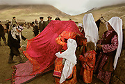"""The bride, along with her sisters and other close female relatives are walking into the yurt, hidden from view, after squatting under a red cloth in front of the ceremonial yurt, weeping and crying - signifying the upcoming """"loss"""" of the bride to her husdand's family.<br /> The Kyrgyz wedding ceremony of Koormoochoo Saïra (son of Yunus Amid) in Utch Djelgha summer camp, 5th August 20005.<br /> <br /> Adventure through the Afghan Pamir mountains, among the Afghan Kyrgyz and into Pakistan's Karakoram mountains. July/August 2005. Afghanistan / Pakistan."""