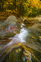 wide angle lanscape of texas falls during autumn, Vermont