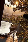 The Pont de l'Archeveche bridge beside the Notre Dame de Paris in the early hours of the morning in Paris, France