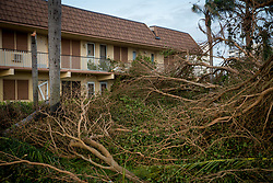 September 11, 2017 - Marco Island, Florida, U.S. - Fallen trees are seen following Hurricane Irma at Marco Island, Fla., on Monday. Irma made landfall at Marco Island as a category 3 hurricane, according to the National Hurricane Center. (Credit Image: © Loren Elliott/Tampa Bay Times via ZUMA Wire)