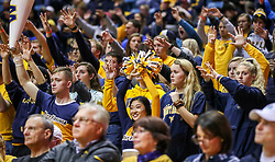 Dec 1, 2018; Morgantown, WV, USA; West Virginia Mountaineers cheerleaders and students pause for a free throw during the second half against the Youngstown State Penguins at WVU Coliseum. Mandatory Credit: Ben Queen-USA TODAY Sports