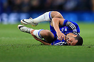 Pedro of Chelsea reacts in pain after taking a knock on his leg. Barclays Premier league match, Chelsea v Tottenham Hotspur at Stamford Bridge in London on Monday 2nd May 2016.<br /> pic by Andrew Orchard, Andrew Orchard sports photography.