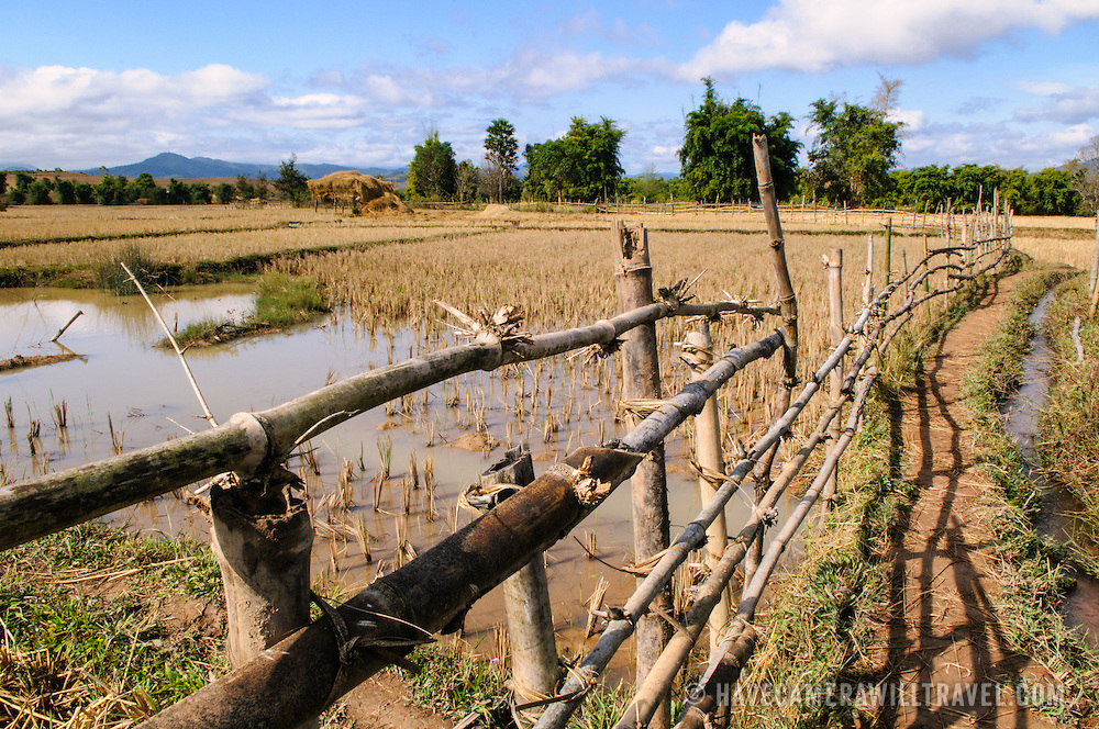 Rice fields and walkway on the way to Site 3 of the Plain of Jars in Laos.