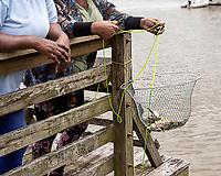 Crab Trap with Crabs, Intercoastal Waterway, South Carolina   McClellanville, South Carolina photo by catherine brown