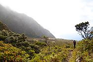 At the top of the Kaupo Gap in Haleakala National Park on the island of Maui, Hawaii, USA