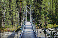 A suspension bridge spans Riley Creek on the Triple Lakes Trail in Denali National Park, Alaska.