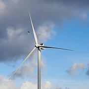 Stock | Sustainability | Energy