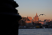 Autumn scene with sun setting on St Paul's Cathedral from the Southbank riverside walkway, London, United Kingdom. The South Bank is a significant arts and entertainment district, and home to an endless list of activities for Londoners, visitors and tourists alike. (photo by Mike Kemp/In Pictures via Getty Images)