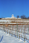 The Disznoko vineyard with a watch tower and the rock that has given the name to Disznoko, under snow in winter. The Disznók? winery is owned by AXA Millesimes, a French insurance company. Disznoko means pig's head since a big rock in the vineyard supposedly looks like that. The new winery is impressive and a vast amount of money has been invested. Credit Per Karlsson BKWine.com.