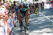 Daniel Oss (ITA - Bora - Hansgrohe) during the 105th Tour de France 2018, Stage 6, Brest - Mur de Bretagne Guerledan (181km) in France on July 12th, 2018 - Photo Luca Bettini / BettiniPhoto / ProSportsImages / DPPI
