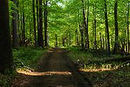 Middletown Reservoir Trails
