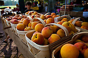 Fresh South Carolina peaches at an organic local produce farmers market in Marion Square in Charleston, South Carolina
