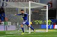Cardiff City's Anthony Pilkington celebrates  after he scores his second goal to equalise at 2-2. Skybet football league championship match, Cardiff city v Rotherham Utd at the Cardiff city stadium in Cardiff, South Wales on Saturday 23rd January 2016.<br /> pic by Carl Robertson, Andrew Orchard sports photography.