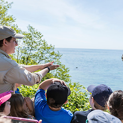 Manomet's Evan Dalton releases a Great Crested Flycatcher during a talk about bird banding to elementary school students in Manomet, Massachusetts.