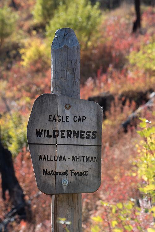 Eagle Cap Wilderness sign, Wallowa - Whitman National Forest, Oregon.