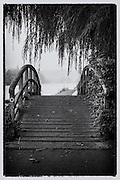 Henley On Thames. Henley. United Kingdom. Riverside Path, between Henley Bridge to Temple Island. Thursday  29/10/2015  [Mandatory Credit. Peter SPURRIER/Intersport Images]