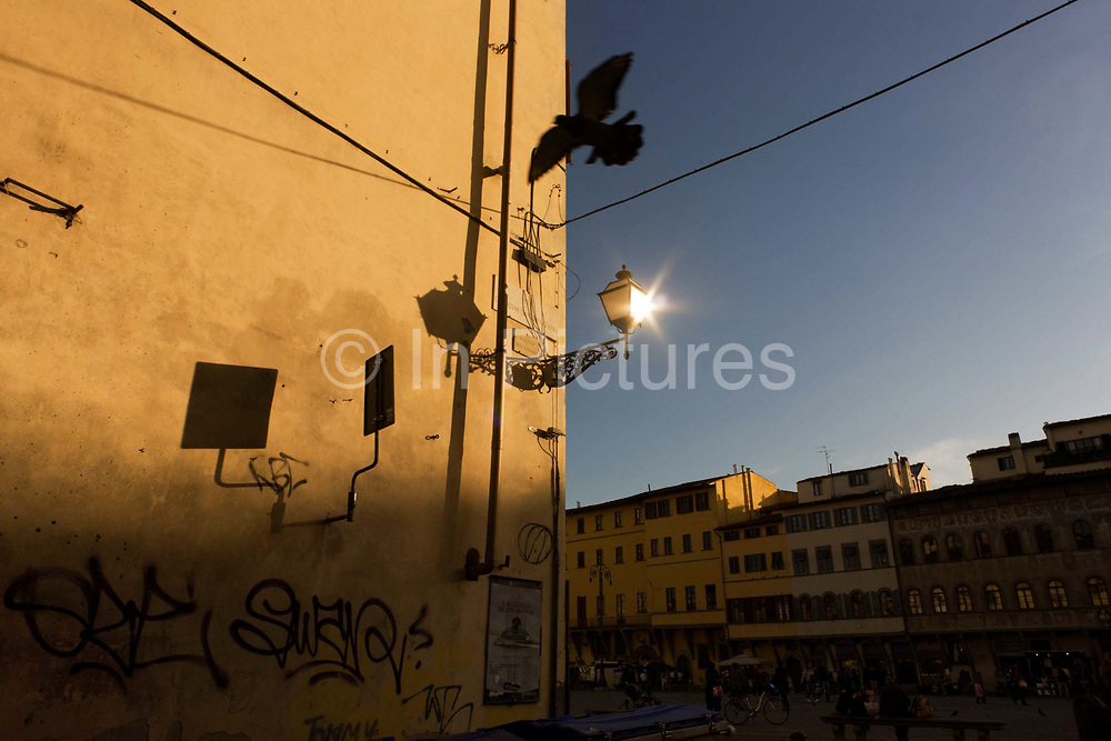 With a setting sun reflected as a starburst of light in a street lamp, we see the yellow-painted plaster wall of a building on the corner of Florence's Piazza Santa Croce, Florence. A pigeon is caught flying at speed past the viewer and graffiti spoils this otherwise idyllic landscape in the renaissance city. Properties that line the piazza are already in deep shadow but there are still many visitors standing around on the stones to admire the Santa Croce church that is located to the left of this street.