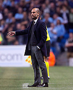02.10.2013 Manchester, England. Bayern Munich Manager Joesp Guardiola during the Group D UEFA Champions League game between, Manchester City and Bayern Munich from the Etihad Stadium.