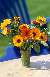 Simple arrangement of marigolds in a vase. Calendula 'Indian Prince'