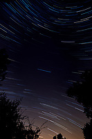 Star Trails Looking South. Composite of 112 images taken between 00:00 and 00:59 with a Nikon D3x camera and 14-24 mm lens (ISO 400, 14 mm, f/4, 30 sec).