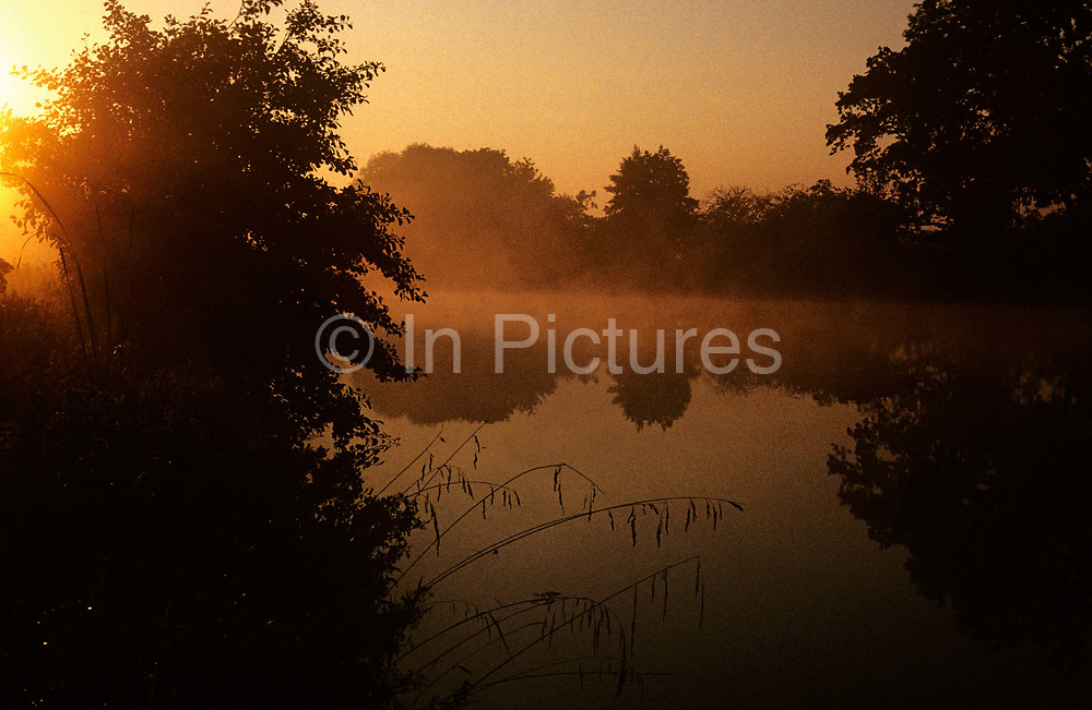 """An early sun rises over the misty surface of the River Thames at Dorchester, Oxfordshire. We see a scene of golden light across the perfectly still waters, a landscape of peace and tranquillity. The mirror-like surface is at Dorchester-on-Thames, just above the Thame's confluence with the River Thames. The River Thames is the second longest river in the United Kingdom and the longest river entirely in England (215 miles or 346 km long). It rises at Thames Head in Gloucestershire, and flows into the North Sea at the Thames Estuary. Historically the Thames was only so-named downstream of the village; upstream it is named the Isis, and Ordnance Survey maps continue to label the river as """"River Thames or Isis"""" until Dorchester."""