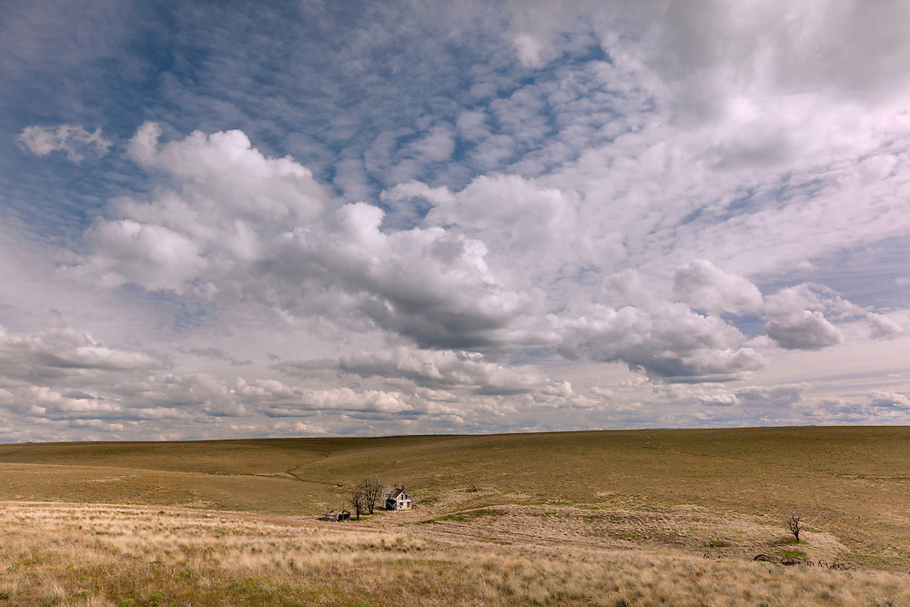 A lonely and abandoned homestead is dwarfed under a big sky full of cumulous clouds, on the high plains of Gilliam County, Oregon.