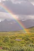 Rainbow over Alaska Range from Sable Pass, Denali National Park, Alaska. Digital original ©Robin Brandt #06_2789